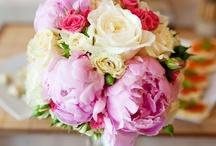 peonies! / my favourite flowers ever!!!!