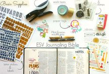 Illustrated Bible / by Miss Merli