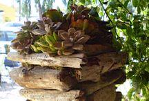 ZAHRADA / zahradní dekorace, zahradní nábytek,