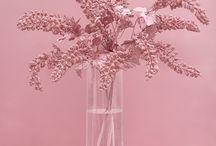 Insta --- pink