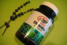 Mi experiencia con el Alga Chlorella