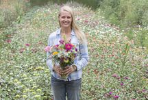 SUMMER at Renfrow Farms / Blooms and veggies at our farm in NC, July-September