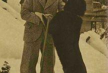 Hitler și Stalin