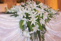 Gelin Damat Masa Çiçeği