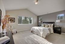 My Master-bedroom Renovation / by Melissa Gold