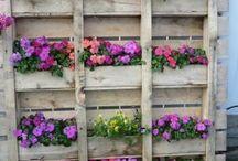 Vertical garden / Horisontal have