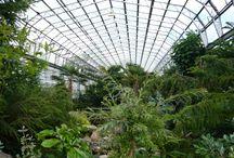PDB - Greenhouses