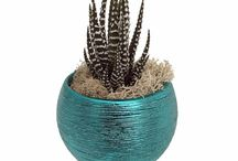 Magnetized Life Eclipse Planters