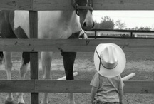 Fun & cute horsey pics / There's something about a baby and a mini that I can't help but repost!  Also, who can resist a mini-donk!