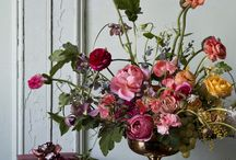 Inspiration: Dutch Masters style florals / Rich, opulent colours; flowers and fruits inspired by the paintings of the Dutch masters