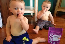 Navitas Naturals KIDS / Little ones with big appetites for superfoods! / by Navitas Naturals