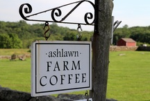 Ashlawn Farm Coffee / by Connecticut Food & Wine