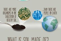 --- SOIL --- / Soil Resources and Info
