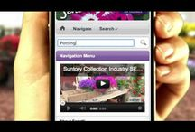 How-To Videos / This board showcases The Suntory Collection's extensive collection of How-To videos. They offer great tips and ideas on how to bring your garden to life with step by step instruction. / by Suntory Flowers