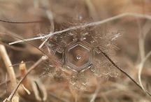 Lighting of natural  Reflection  Crystal / 自然のライティング 発光 反射など