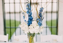 Jenny's Wedding - Ideas!! / Jennifer's wedding is coming!!!!! Aaaahhhh!!! / by Katie Robson