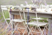 Lavender - furniture