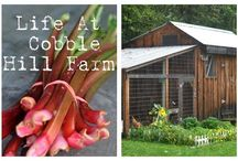 Home Farming Blogs