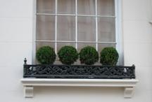 Window boxws