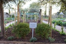 Kitchen Gardens / Inspiring kitchen gardens, perfect for Alitex glasshouses