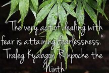 Traleg Kyabgon Rinpoche Quotes