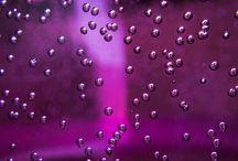 всё violet, violaceous, purple, pink
