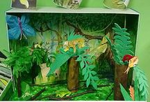 Rainforest 3D Project