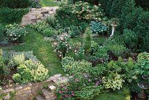 Idei grădină