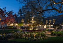 Residential Old World Charm / The homeowners wanted to light unique features of their home while adding a level of security.  / by McKay Landscape Lighting