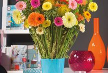 Cheeky Chic /  Small colourful gerbera bouquets full of inspiration