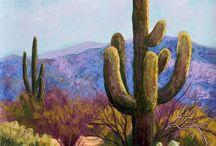 5) Anywhere - Arizona