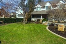Front Yards / A gallery of some of the front yards we have created. *All photos are of our own work.*
