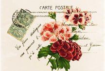Винтаж открытки