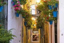 Mooie plekjes / Foto's van mooie en romantische plekjes of straatjes