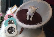 Pet Couture / Boutique di lusso per pet
