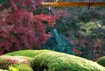 Japanese   -Garden-