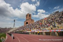 Bologna-Avellino 1-1 (Serie B 2014-2015)