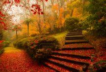 Spending Autumn Outdoors