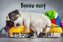 Bonjour,Belle journée,Bonne nuit