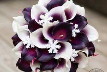 Blumen/Sträuße