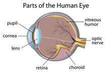Optic Neuritis and Eye Problems