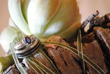 Wedding Photography / Creative photos / by Michelle Cilliers