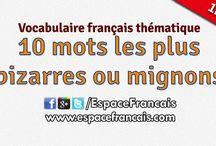 le francais.