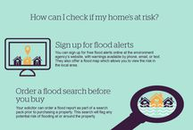 Infographics / Property risk infographics