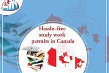 Study work permit