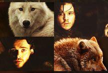 Stark's Direwolves