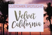Customer Spotlights