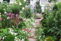 Pretty Gardens / by Linda Altland