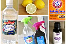 Homemade Cleaners / by Debbie Meadows