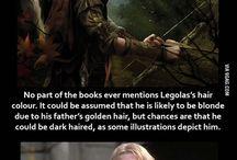 Tolkien Universe